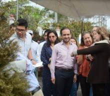 """Recicla tu Navidad """"Con la misma ilusión que compramos el pino de navidad, traigámoslo a que se recicle y  llegue al lugar indicado"""": Fernando Yunes Márquez"""
